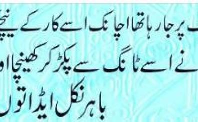 funny-sardar-latifay in urdu image