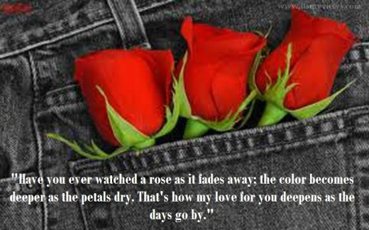 love-picture-with-rose- and love quotes 2013