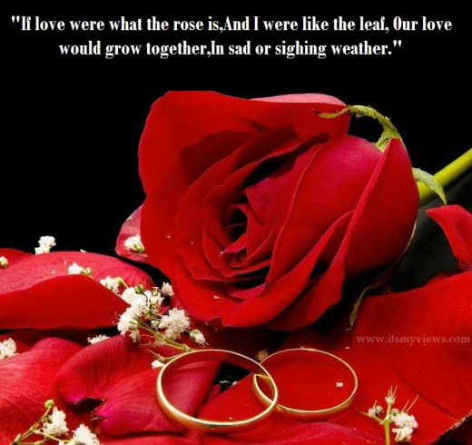 most-romantic-rose-picture-with-sweet-romantic-love-poetry-to-share-at-facebook-for-boyfriend-2013-2014