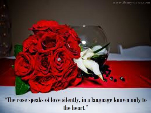 red-flower-most-beautiful-romantic-quotes-picture-2013-2014