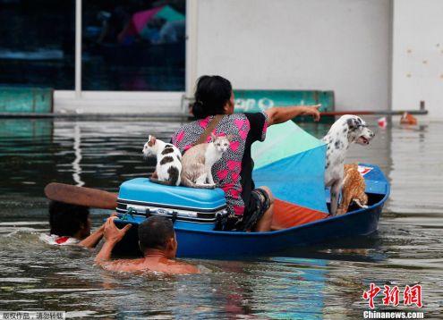 thai_flood_04