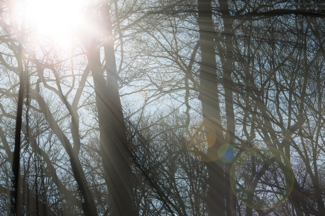 Sun Rays - After