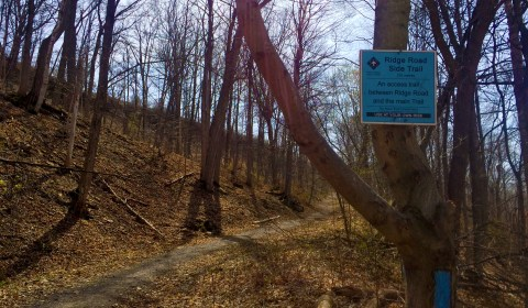 All of the side trails are marked with blue signs and blazes.