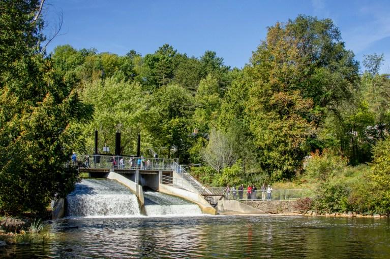 I've Been Bit! A Travel Blog - Grey County Autumn Adventures Mill Dam Owen Sound