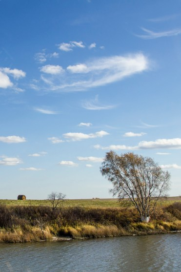 Fields and Blue Skies - 20+ Photos Guaranteed to Inspire a Manitoba Road Trip :: I've Been Bit! A Travel Blog