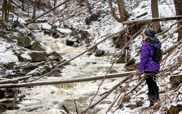 Walking along Borer's Creek - Hiking Hamilton's Borer's Falls :: I've Been Bit! A Travel Blog