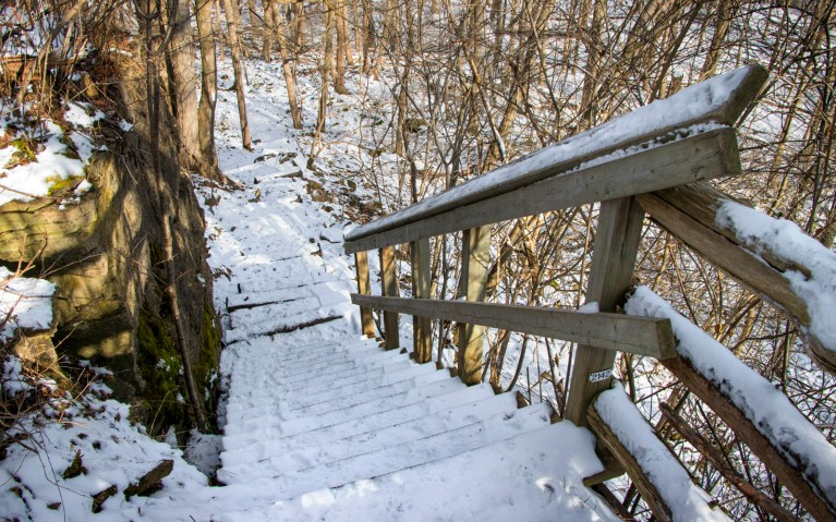 Staircase Down the Niagara Escarpment - Hiking Hamilton's Borer's Falls :: I've Been Bit! A Travel Blog