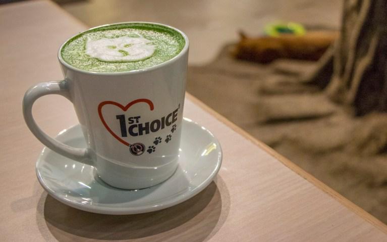Matcha Latte at My Kitty Cafe :: I've Been Bit! A Travel Blog