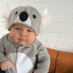 Sonny Blake makes one damn cute koala