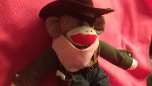 Sock monkey's toy gun confiscated at airport