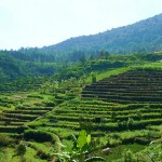 Gedong Songo – One of Central Java's Best Kept Secrets