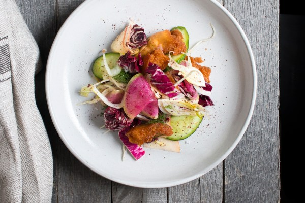 Fennel & Watermelon Radish Fattoush Salad   I Will Not Eat Oysters