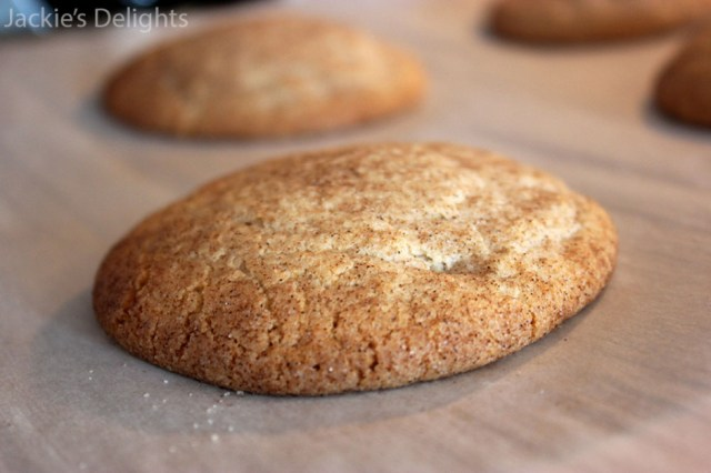 fat fluffy snickerdoodles.1