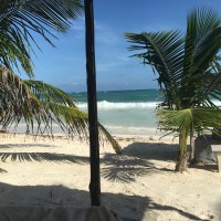 Beach Party Diet Update: How I lost 11 lbs and 2.4% Body Fat in Just 15 Days