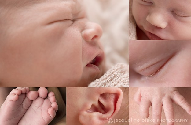 Ham lake newborn photographer in north metro