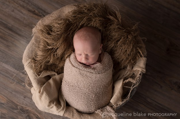 photographer, ham lake, mn, Andover, Blaine, newborn photography