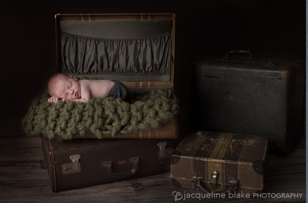 Portrait photographer in ham lake, Blaine, newborn photographer
