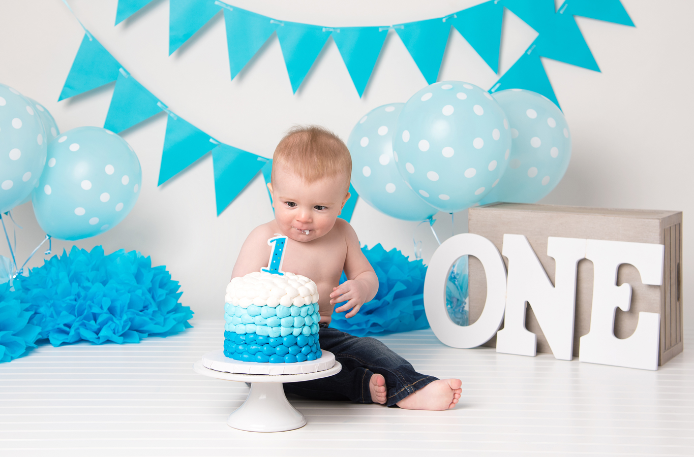 One Year Cake Smash, Photography Studio, Ham Lake, Blaine, Andover