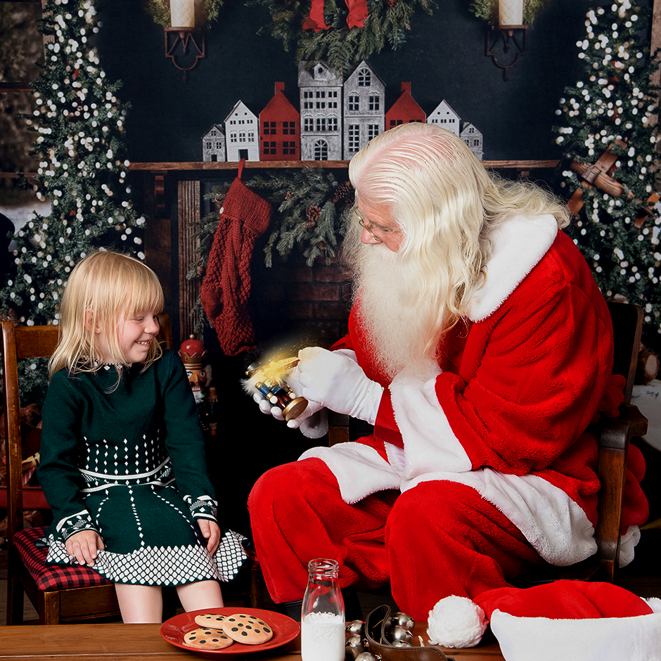 Private Photo Session with Santa