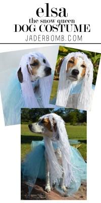 Make Homemade Dog Costumes