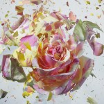 explosion-florale-martin_klimas2