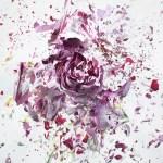explosion-florale-martin_klimas3
