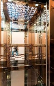 Jaimini Glass Lift 5