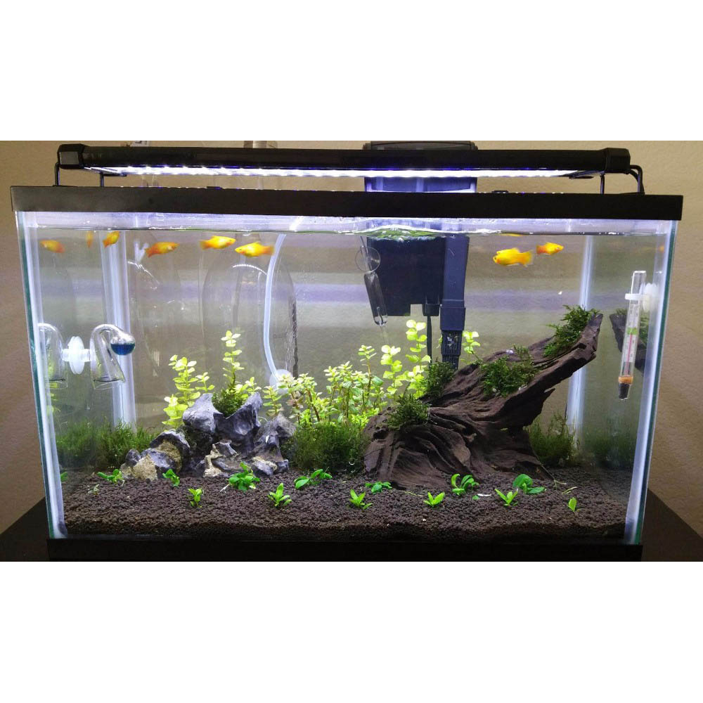 Desain Aquarium Sederhana Lampu Akuarium Led Light Extendable Bracket 72cm Zjl 80 Black
