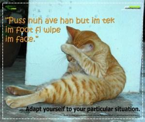 Ja Proverb_Puss Nuh Ave Han_FB