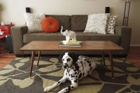 DIY Mid-Century Modern Coffee Table  Jamie Bartlett Design