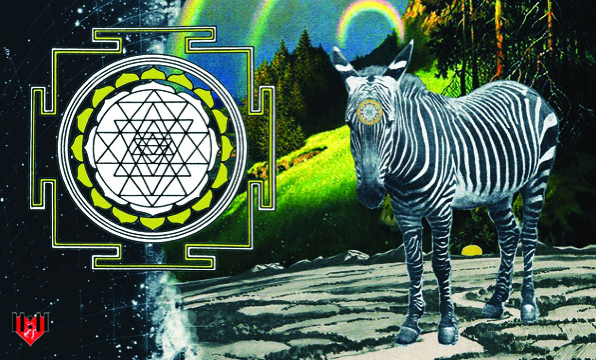 zebra collage art