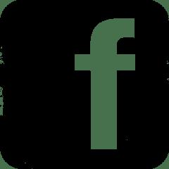 Facebook grunge logo