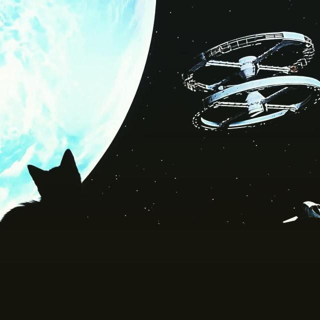 2001 Odyseja kosmiczna Dobre ponadczasowe kino dla caej rodziny Ihellip