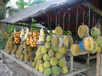 Duriany - najbardziej smrodliwe owoce na świecie (zakaz przewożenia w samolotach).