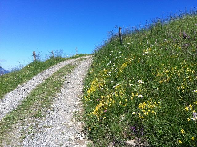 mountain-path-953843_640
