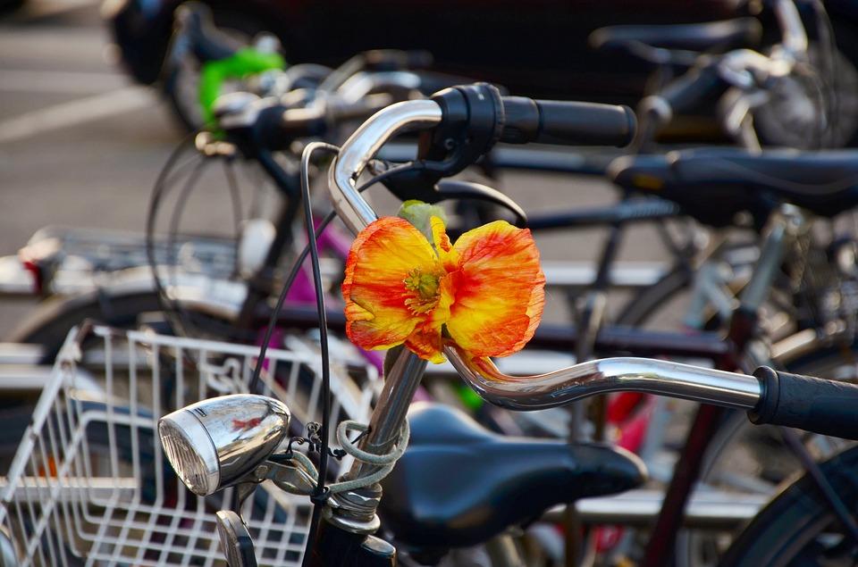 bike-1345383_960_720
