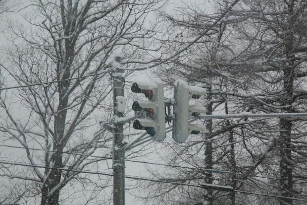 雪の中の信号機
