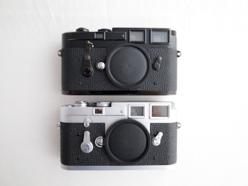 Hairy What Is Leica M Sale Japan Camera Hunter Leica Film Camera Amazon Leica Film Cameras