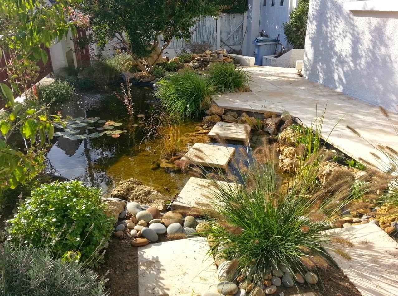 Petit Jardin Japonais Avec Bassin | Jardin Zen Avec Bassin Best Le ...
