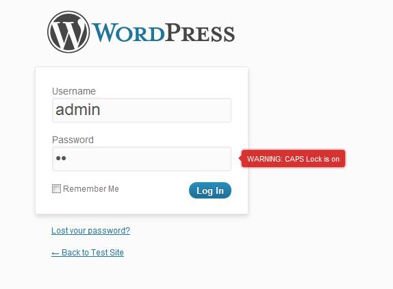 Wordpress CAPS lock detection plugin view