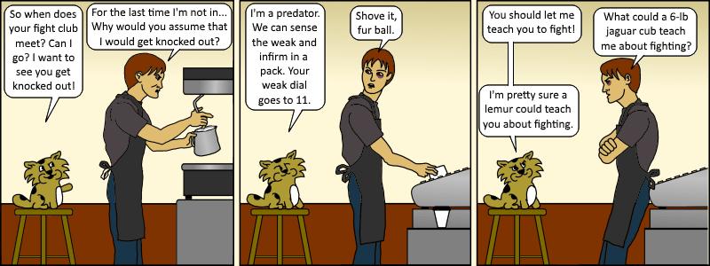 Java 019