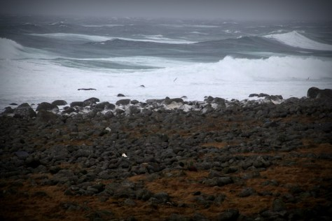 niespokojne morze