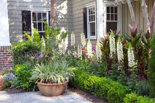 Front Flower Garden - Best