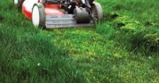 """How to Mow a Tall Overgrown Lawn from """"The Lawn Care Nut"""""""
