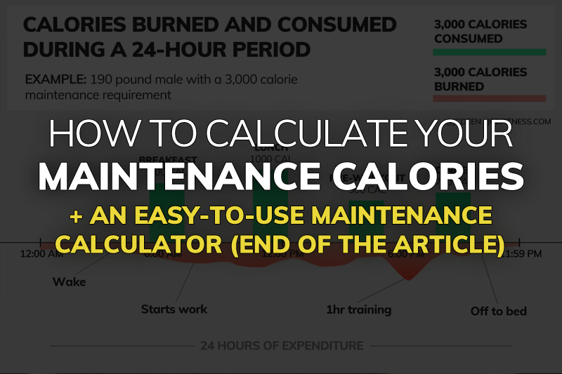 What Are Your Maintenance Calories? (maintenance calorie calculator) - calorie and fat calculator