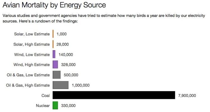 usnews-avian-mortality-energy-source