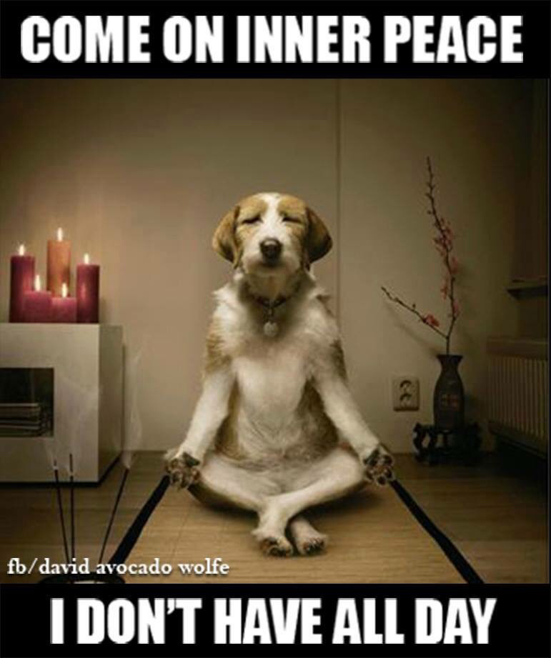 Come on inner peace I dont have all day
