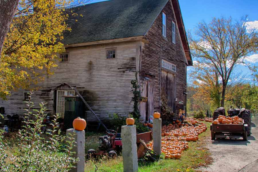 Fall Leaves And Pumpkins Wallpaper Fall Foliage Photo Of Barn And Pumpkins New England Fall