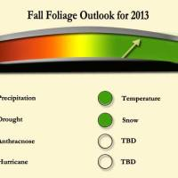 2013 fall forecast for New England.