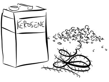 Kerosene barbedwire